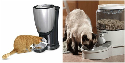 Cat Feeders Review