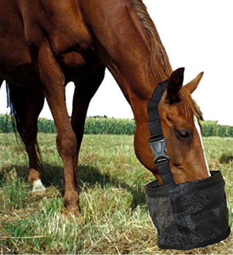 Top Rated Feed Bag for Horses